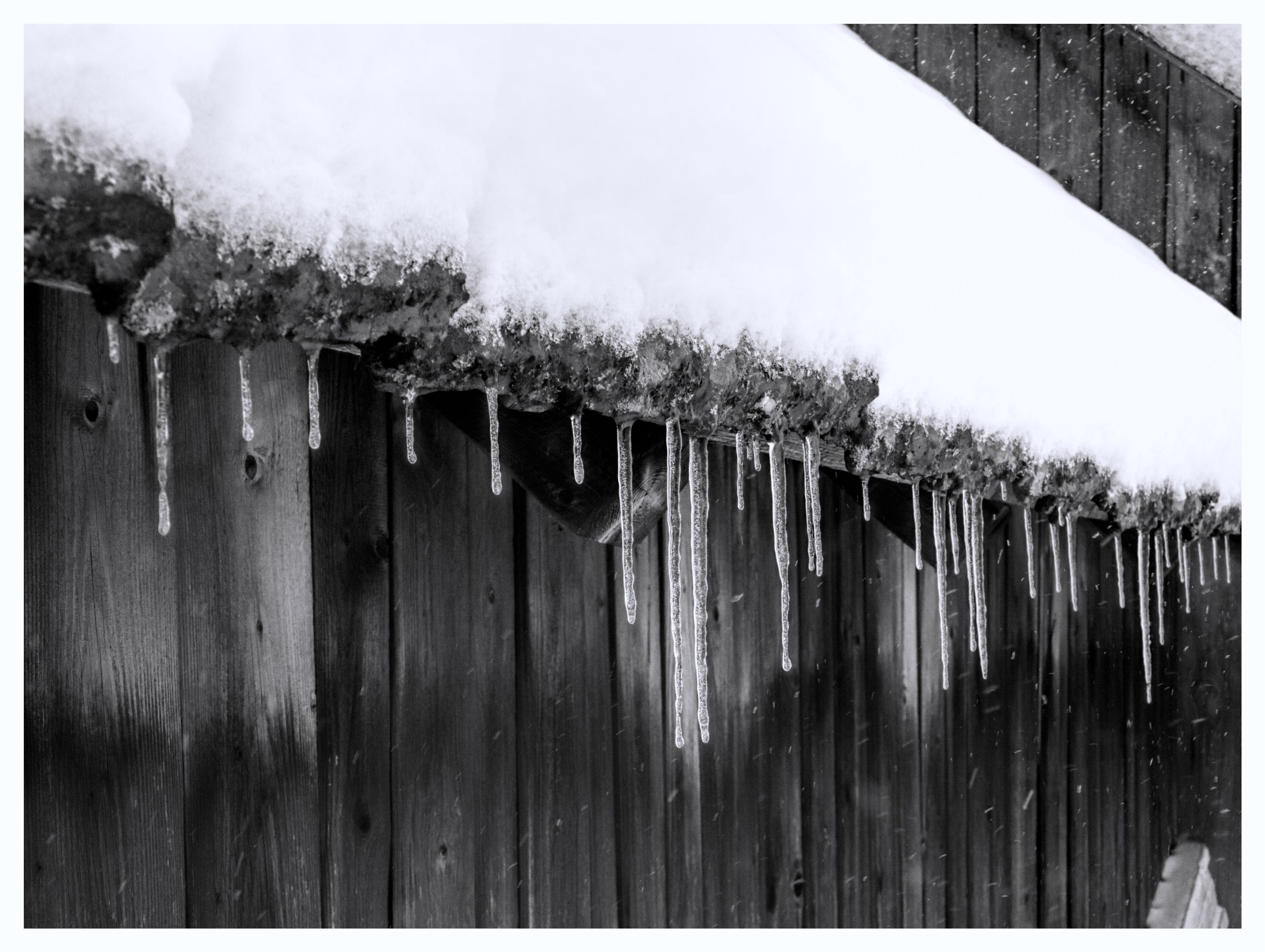 Free stock photo of frost, icicles, snow, snowy