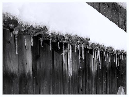 겨울, 고드름, 눈, 눈이 내리는의 무료 스톡 사진