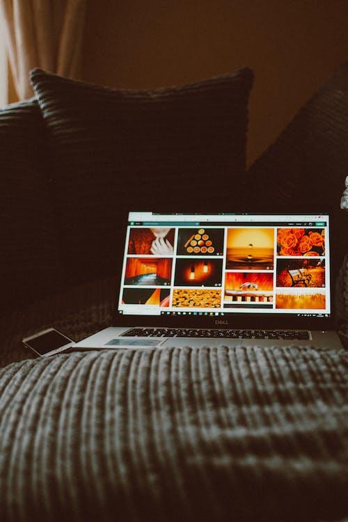 คลังภาพถ่ายฟรี ของ กิ้งก่ามอนิเตอร์, ภาพ, ภาพถ่าย, หน้าจอ