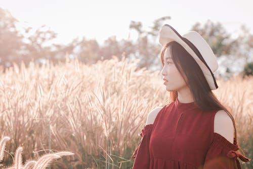alan, Asyalı kadın, çim, çim saha içeren Ücretsiz stok fotoğraf