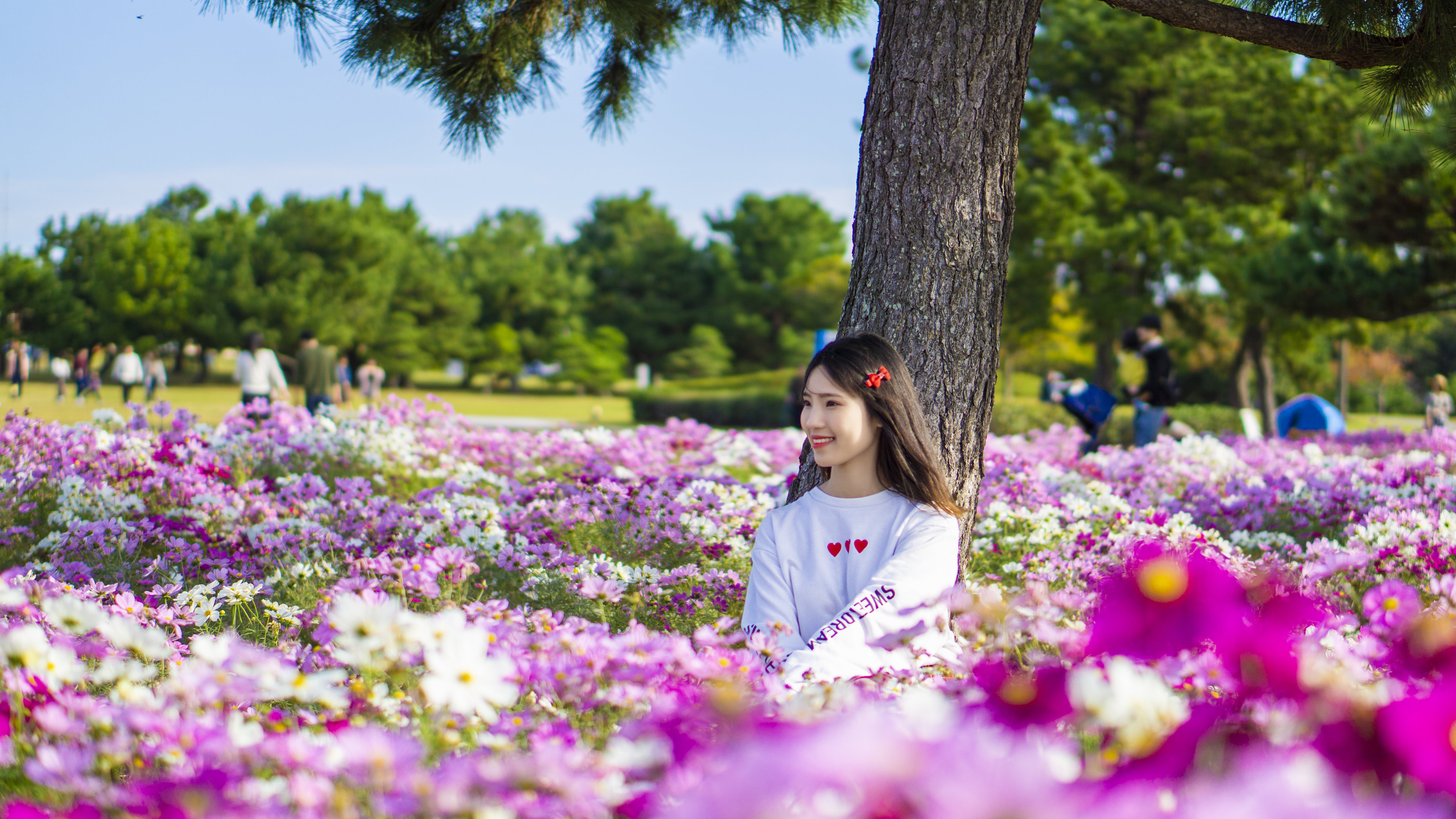Photo of Woman Sitting In The Middle Of Flower Field
