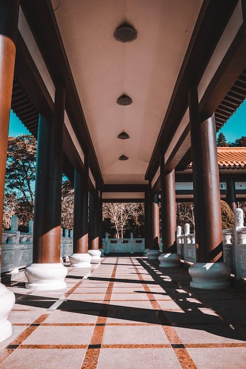 Foto d'estoc gratuïta de arquitectura, Arquitectura asiàtica, ciutat, clareja