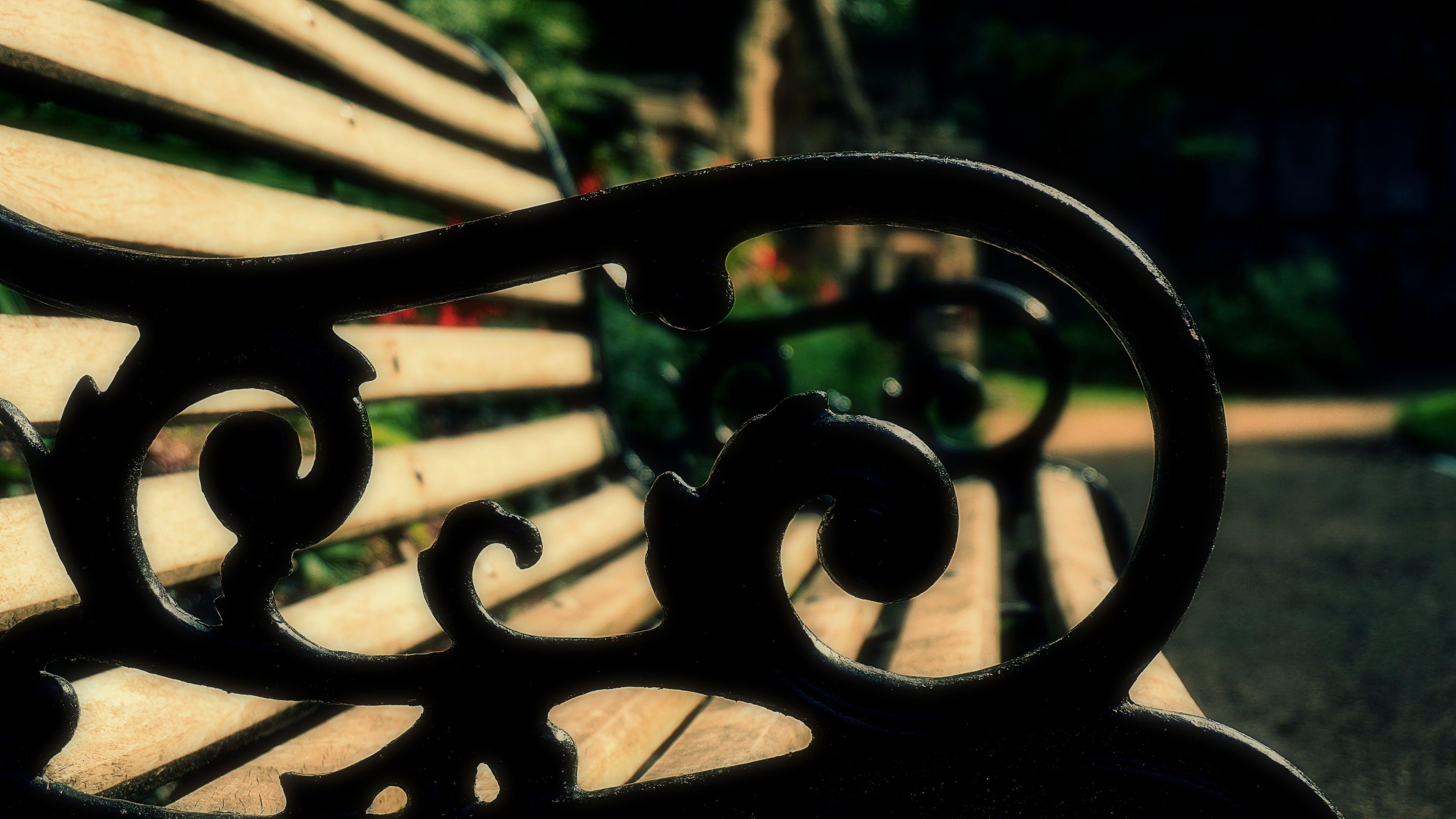 Free stock photo of bench, close up, garden, garden path