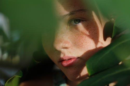 Kostnadsfri bild av fräknar, gömmer, gröna löv, kvinna
