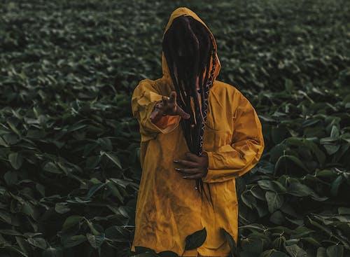 Ảnh lưu trữ miễn phí về áo mưa, đáng sợ, đất nông nghiệp, đất trồng trọt
