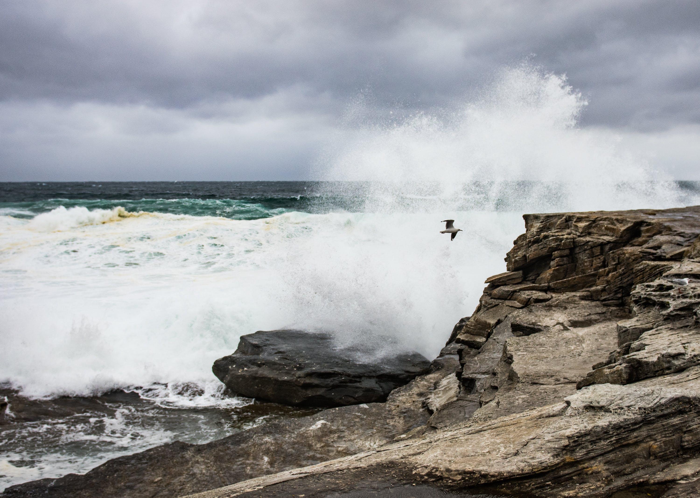 Free stock photo of #coastline, #rocks, #seaspray