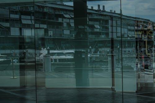Free stock photo of reflection