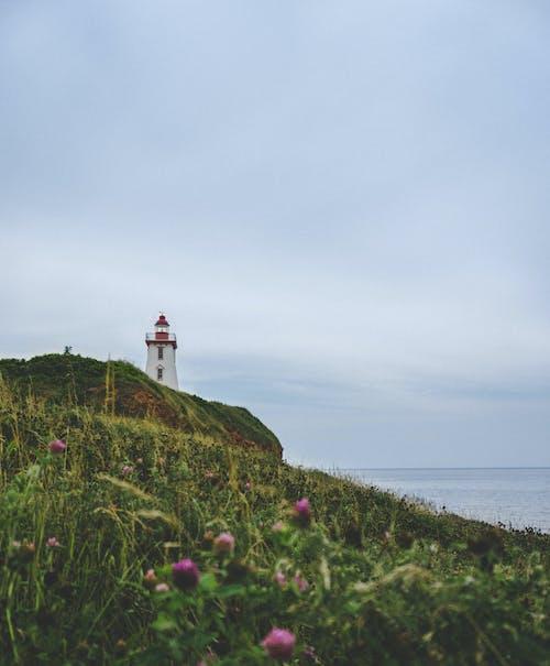 Darmowe zdjęcie z galerii z architektura, kanada, latarnia morska, wybrzeże