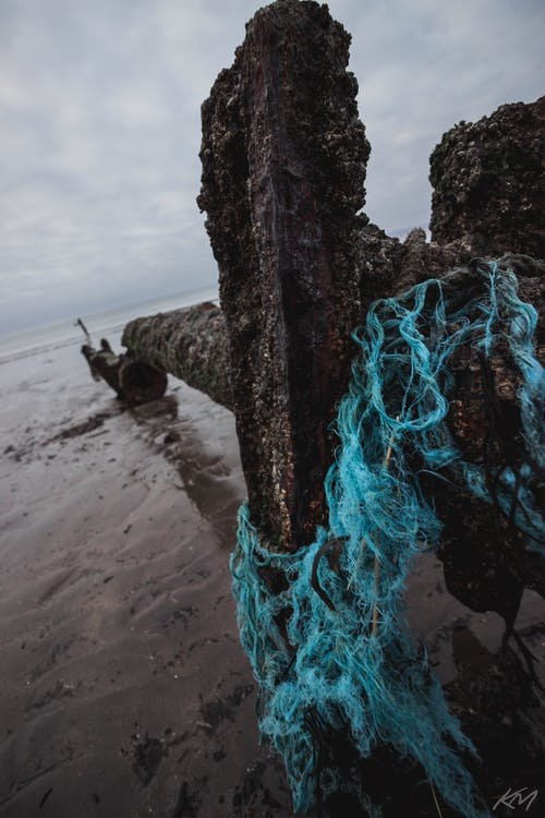Free stock photo of beach, blue, coast, cold