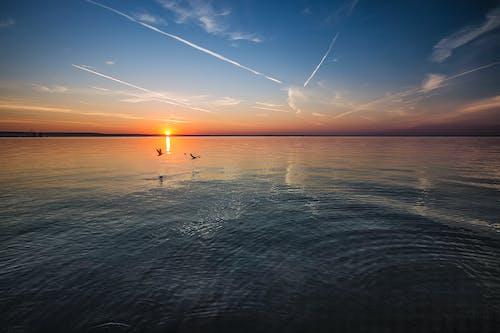 Fotos de stock gratuitas de agua, amanecer, azul, cielo azul