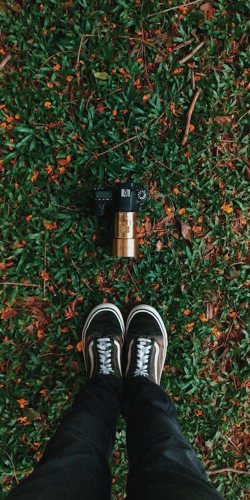 Kostnadsfri bild av fötter, gräs, gymnastikskor, kamera