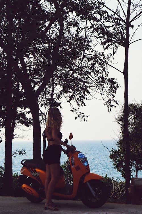 Безкоштовне стокове фото на тему «дерева, жінка, мотоцикл, персона»