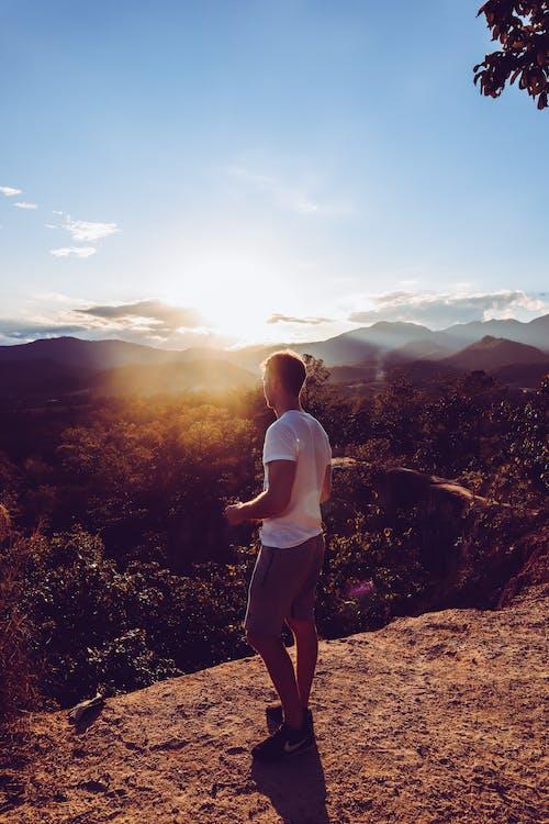 Безкоштовне стокове фото на тему «вечірнє сонце, гірський хребет, гори, дерева»