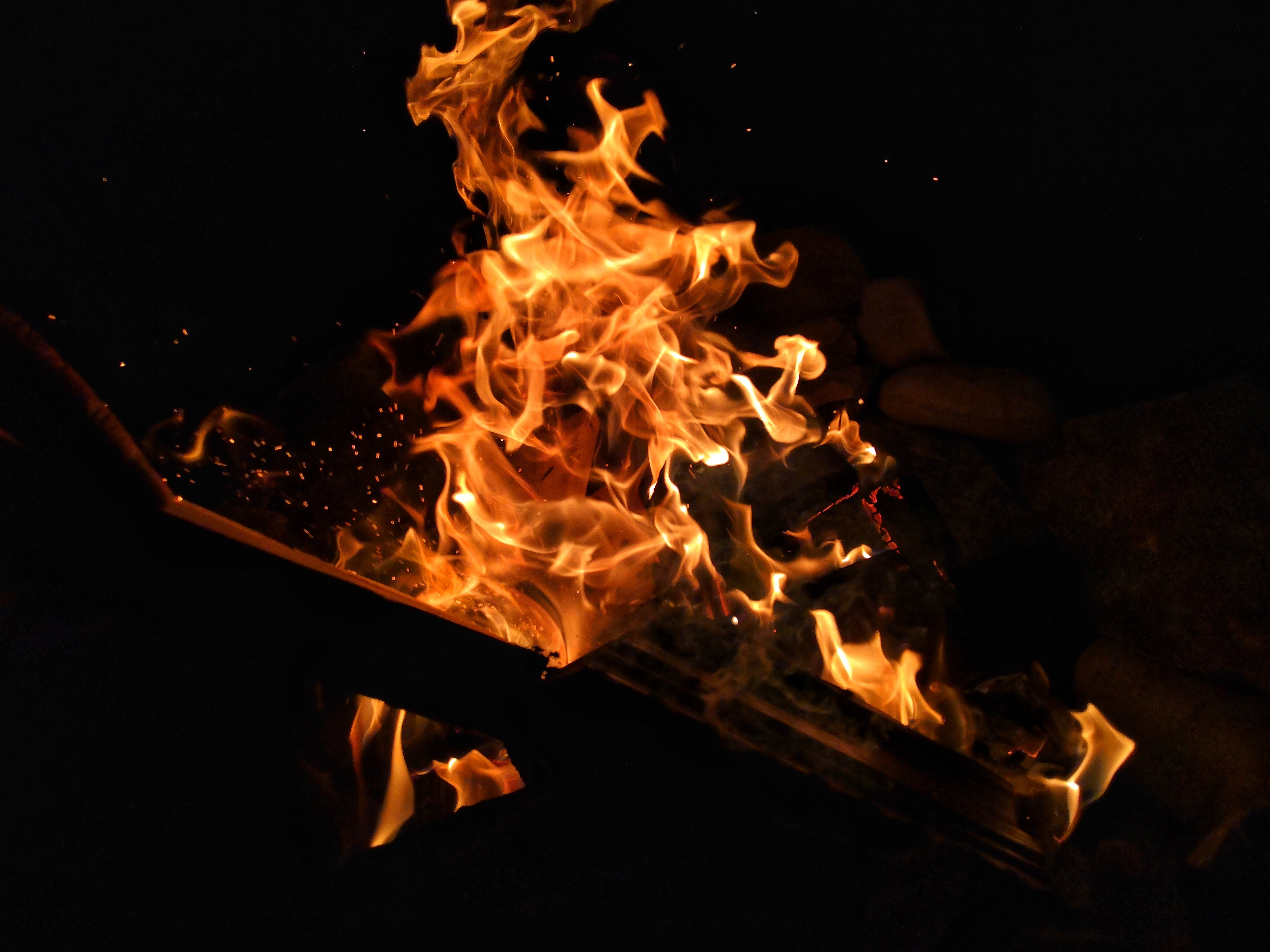 Free stock photo of burning, camping, fire, flames