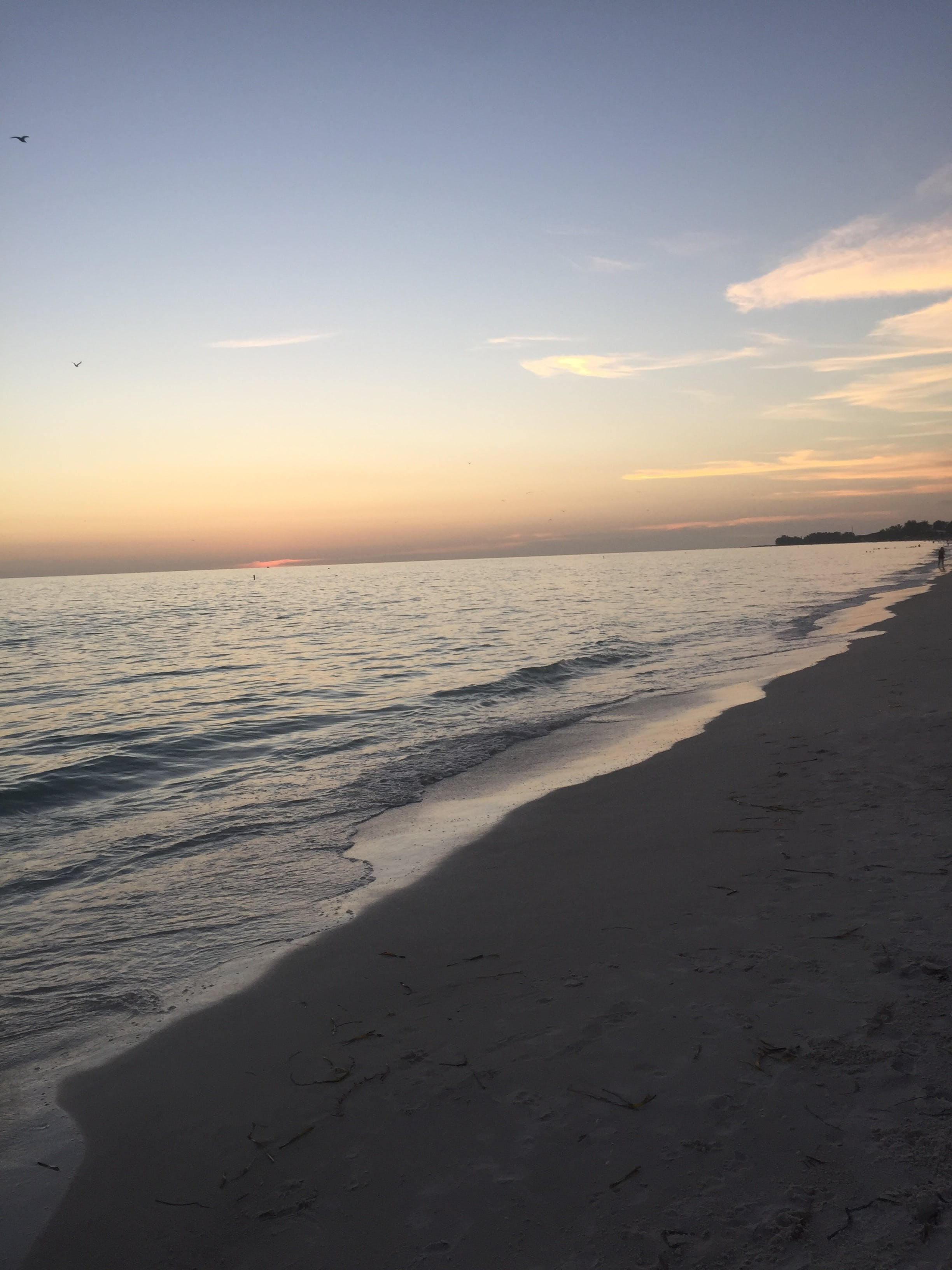 Free stock photo of beach, calm, ocean, peace