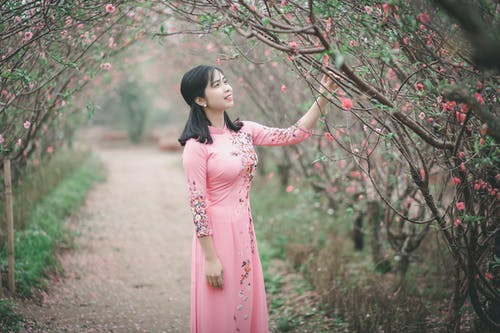 Gratis lagerfoto af ao dai, asiatisk kvinde, blomster, dagslys