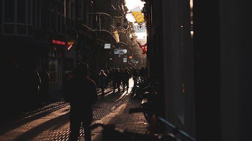 Foto d'estoc gratuïta de arquitectura, botigues, carrer, carrer de llambordes