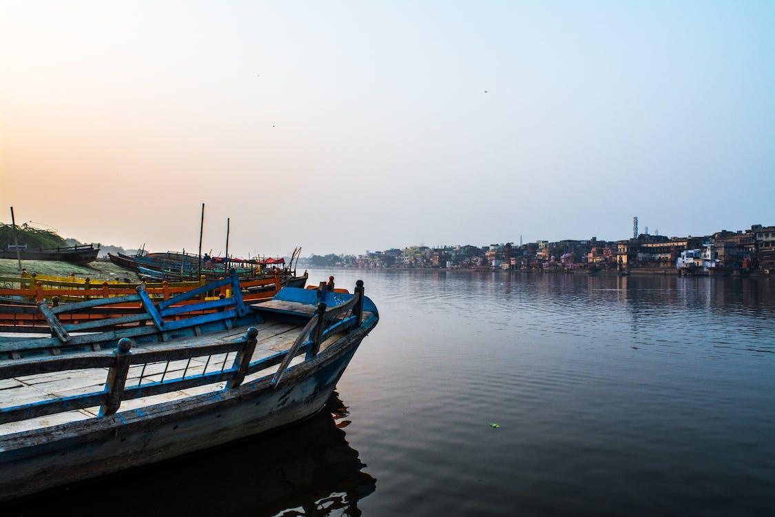 Безкоштовне стокове фото на тему «апельсин, берег річки, вода»