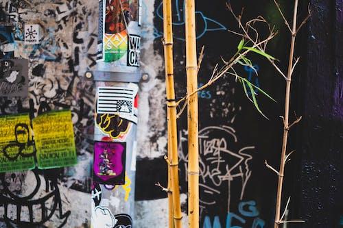 Foto d'estoc gratuïta de 35 mm, aleatori, amsterdam, carrer