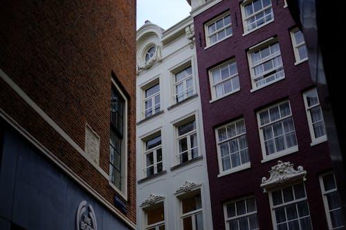 Foto d'estoc gratuïta de 35 mm, amsterdam, carrer, edificis