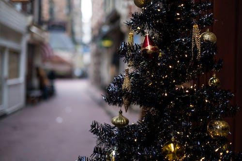 Foto d'estoc gratuïta de 35 mm, amsterdam, arbre de Nadal, carrer