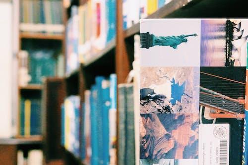 Gratis lagerfoto af bibliotek, boghandel, boghylde, boghylder