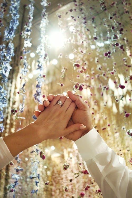 Безкоштовне стокове фото на тему «весілля, заручення, заручини, кільце»