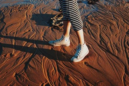 Ingyenes stockfotó cipő, converse, converse all star, divat témában