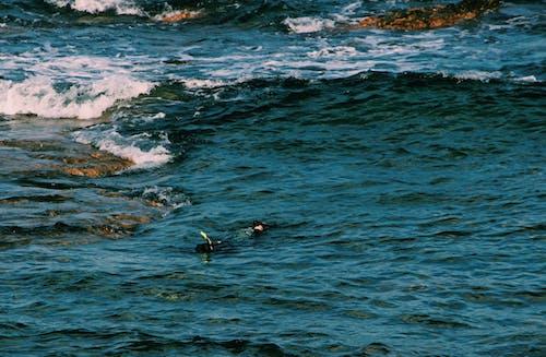 Free stock photo of beach, blue, camera, dipped