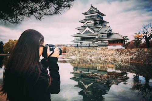 Ingyenes stockfotó építészet, épület, fák, fényképész témában