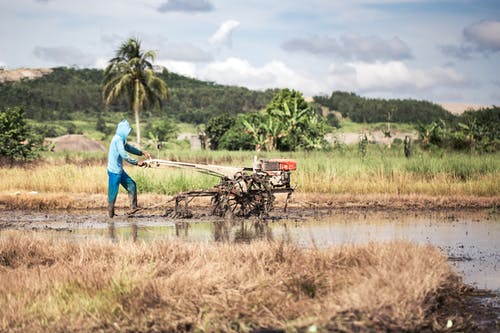 Fotos de stock gratuitas de agricultor, campo, explorar, Indonesia