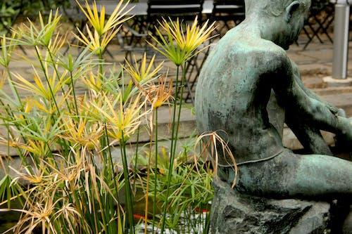 barcelona, bitki, doğa, heykel içeren Ücretsiz stok fotoğraf