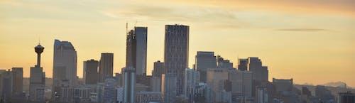 Free stock photo of city skyline, dawn dusk