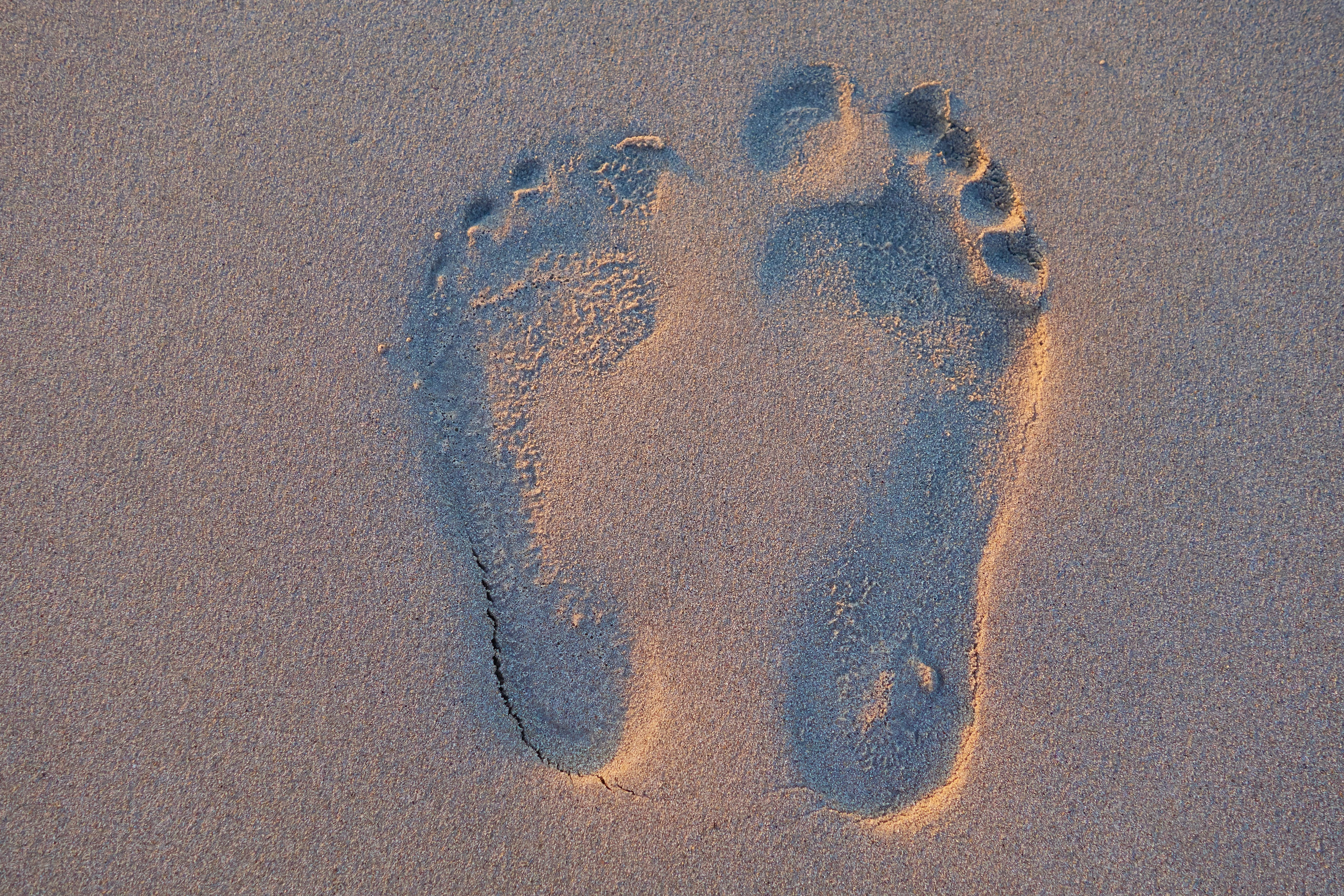 Free stock photo of beach, couple, footprint, footstep
