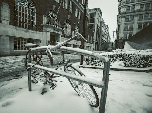 Photos gratuites de angleterre, bicyclette, citadin, cyclisme
