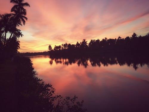Безкоштовне стокове фото на тему «#mobilechallenge, kerala, вечірнє сонце, дзеркальне озеро»