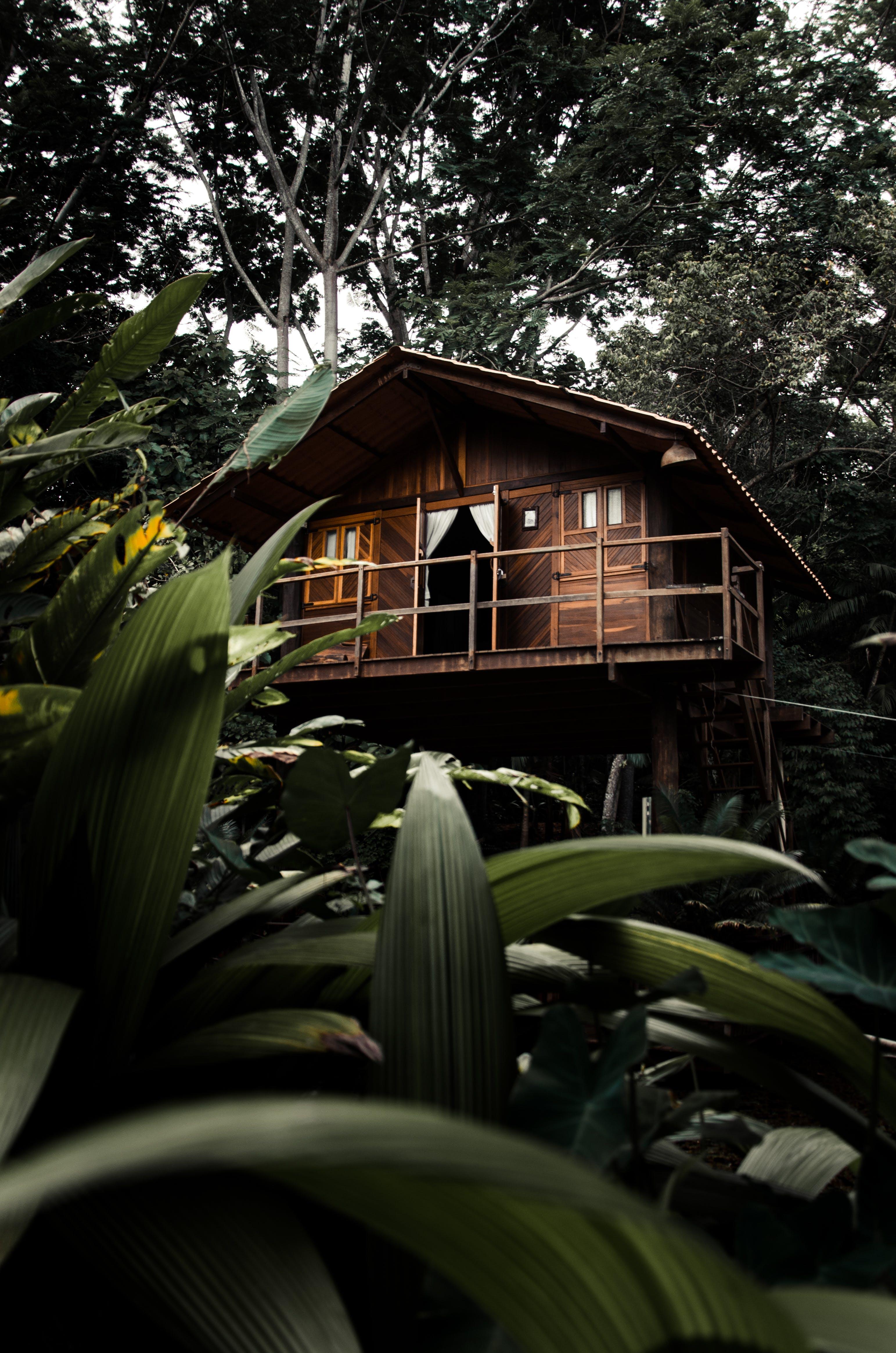 Kostenloses Stock Foto zu architektur, blätter, bungalow, gebäude