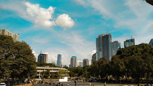 オフィスビル, 建物, 街並みの無料の写真素材