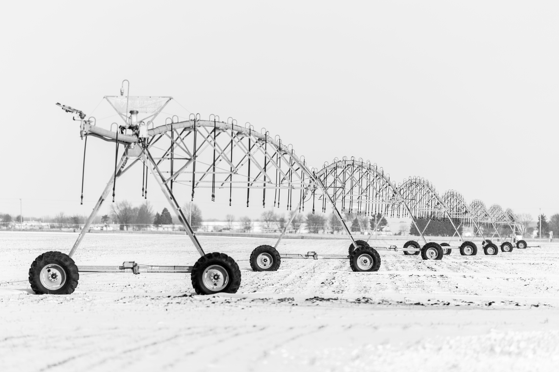 Základová fotografie zdarma na téma arogace, černobílá, farma, farmář
