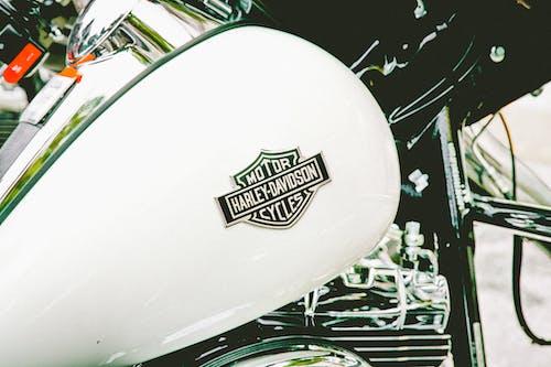 Foto stok gratis harley davidson, mengendarai, sepeda motor, sistem transportasi