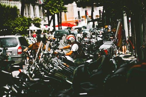 哈雷戴維森, 安全, 摩托, 摩托車 的 免费素材照片