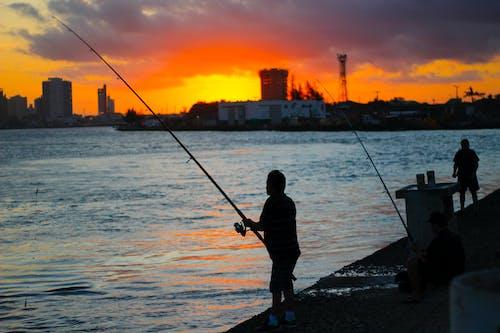 Kostnadsfri bild av havet, kvällssol