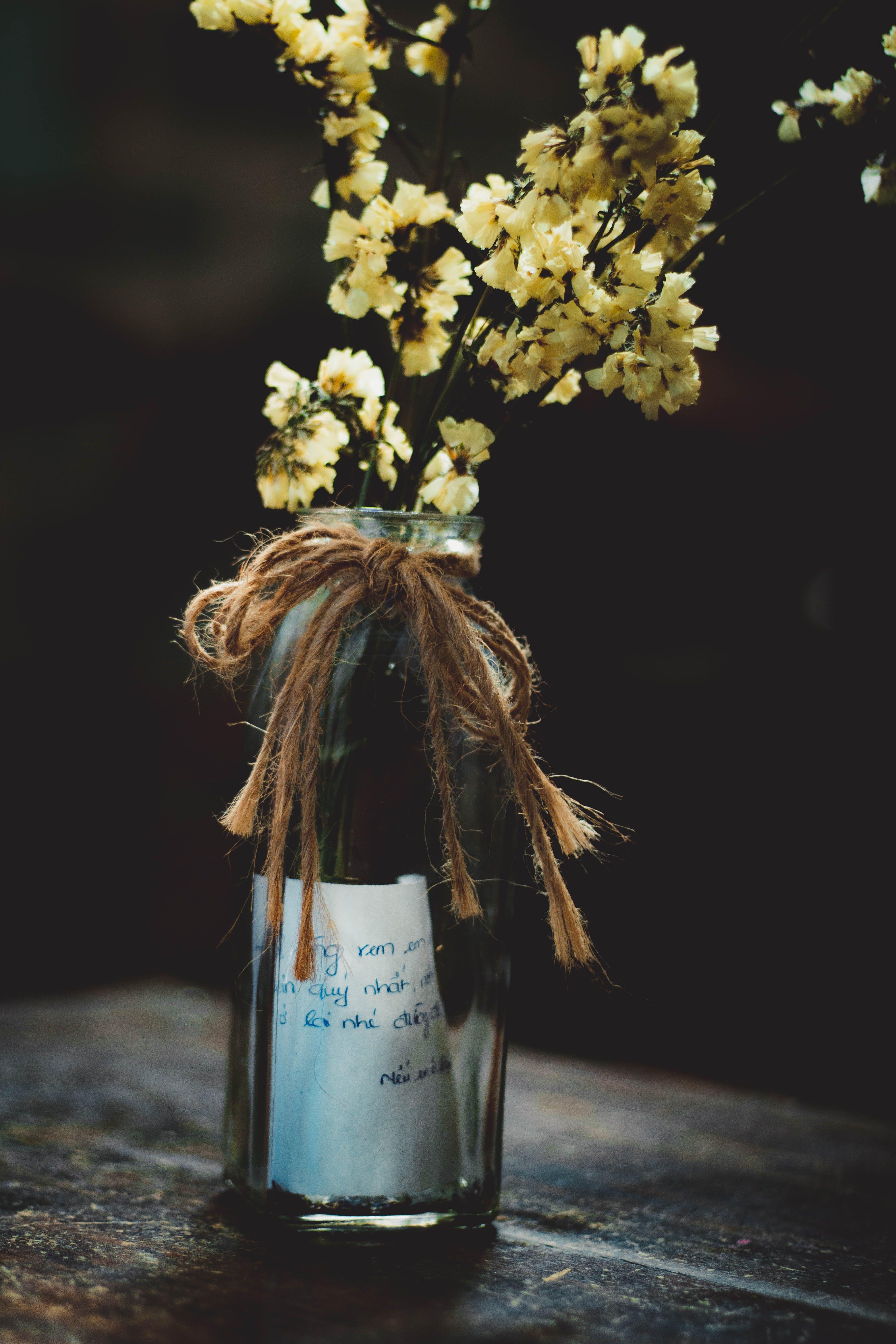 Photo of Flowers in Bottle