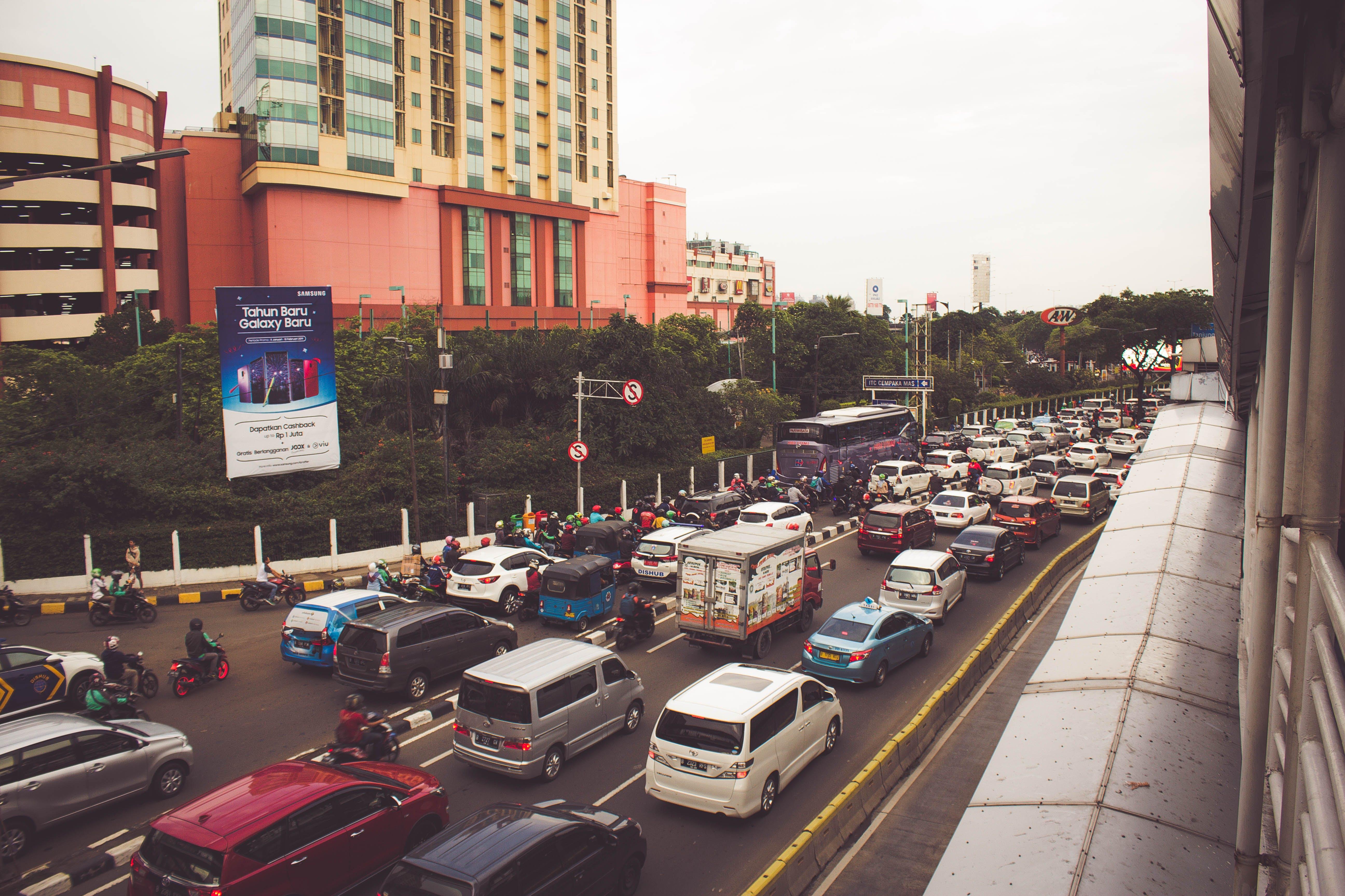 Základová fotografie zdarma na téma auta, auto, autobusová zastávka, budova
