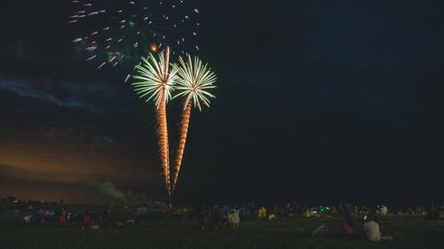 Imagine de stoc gratuită din artificii, focuri de artificii, palmieri