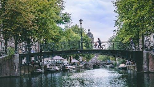 Základová fotografie zdarma na téma Amsterdam, architektura, břeh řeky, kanál