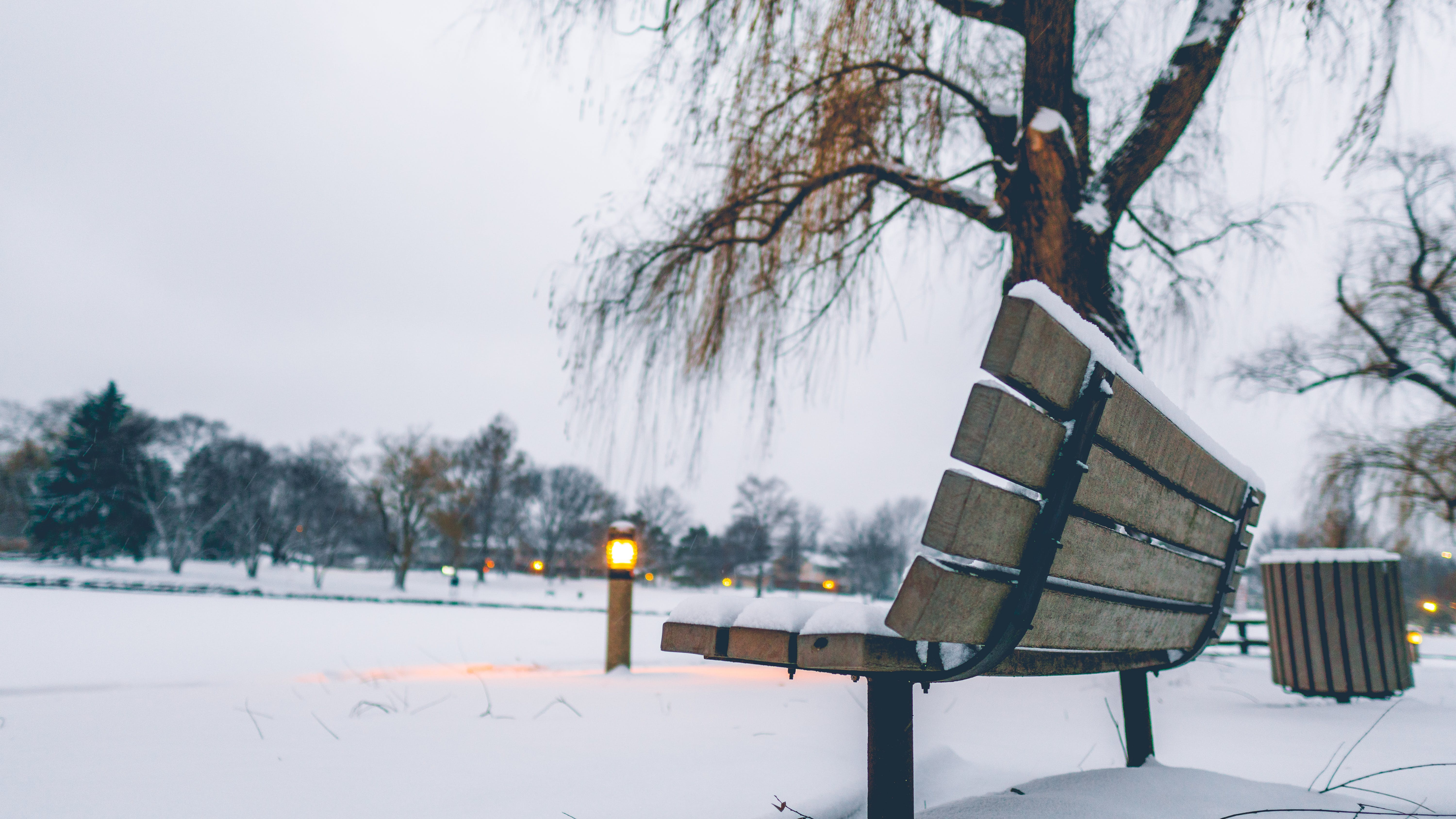 Free stock photo of bench, evening, lonely, night