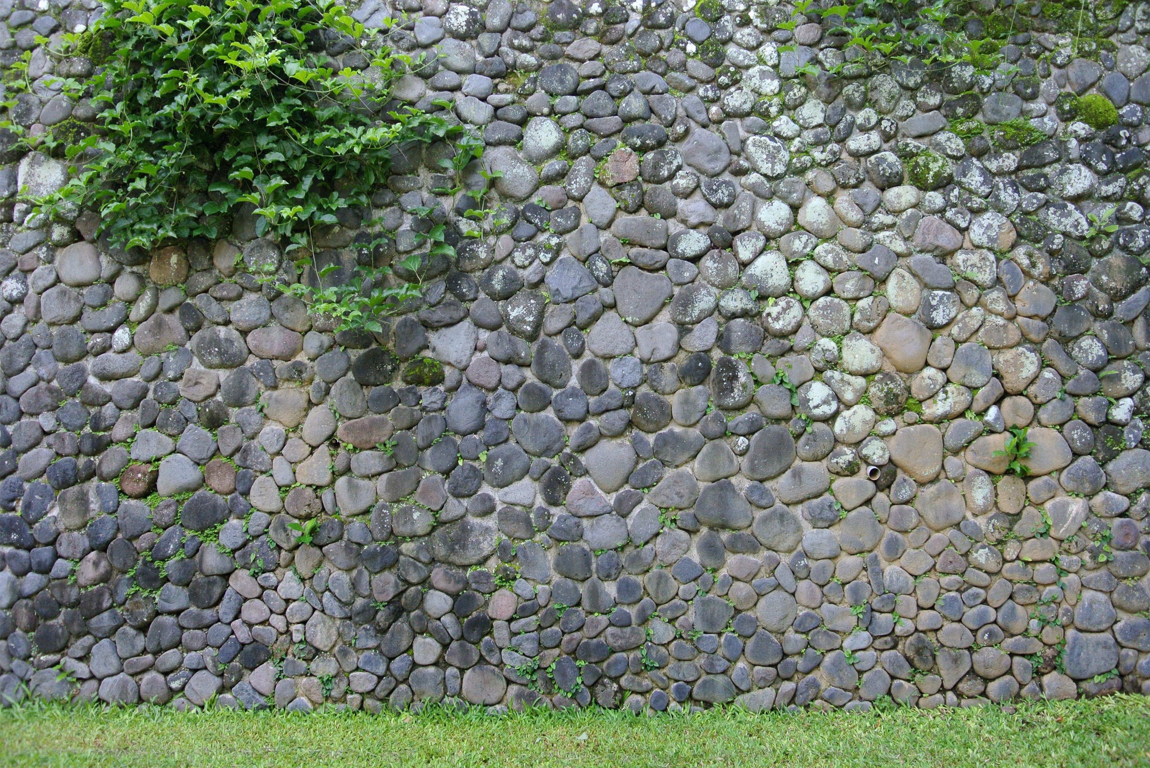 岩壁, 巴厘島, 巴厘島的, 生苔的 的 免費圖庫相片