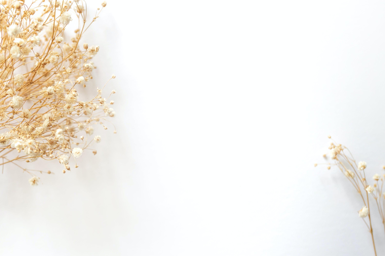 Foto d'estoc gratuïta de #paulwencephotography