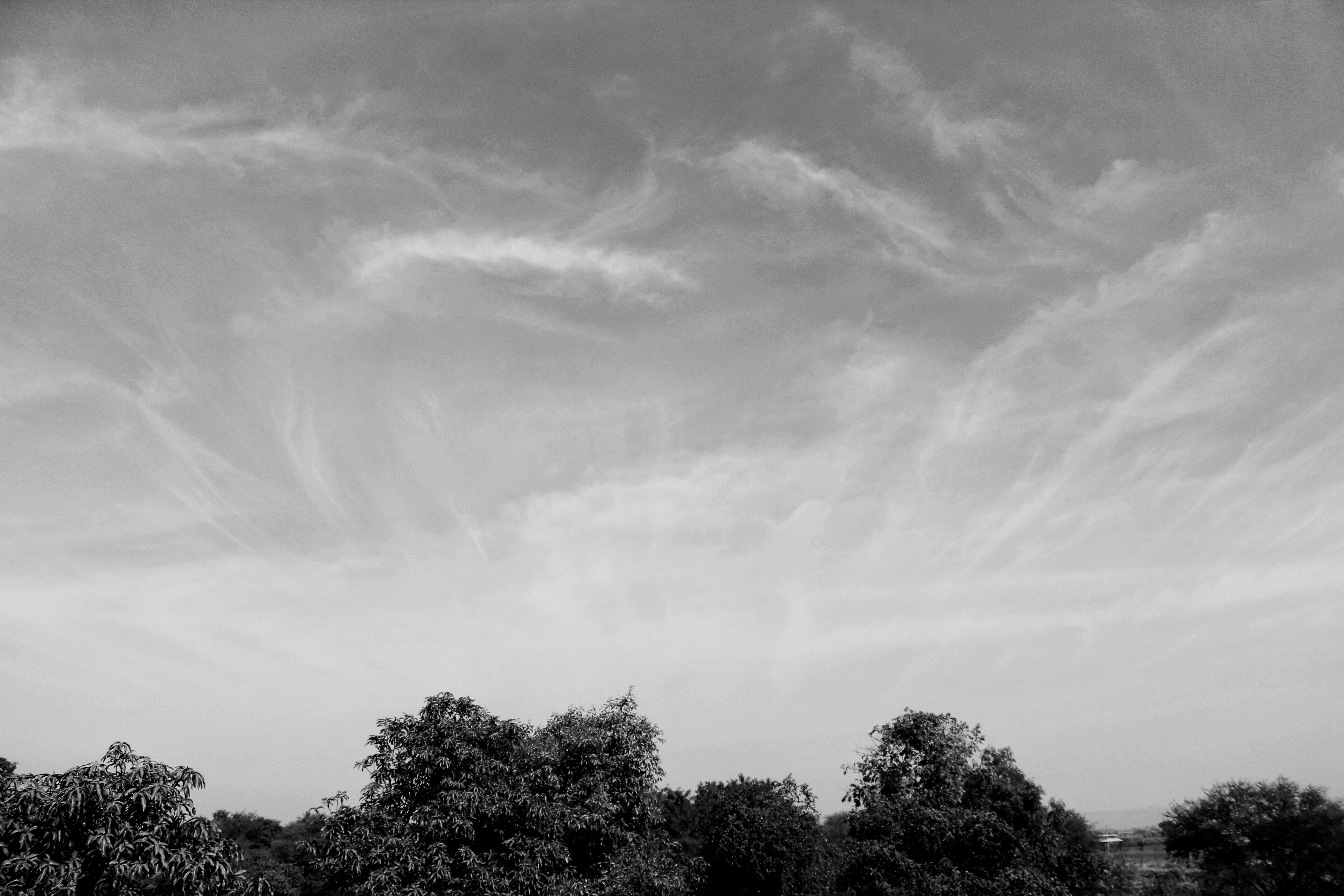 Free stock photo of black and white, blue sky, cloud